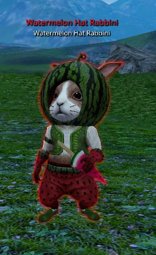 watermelon-rabbini.jpg