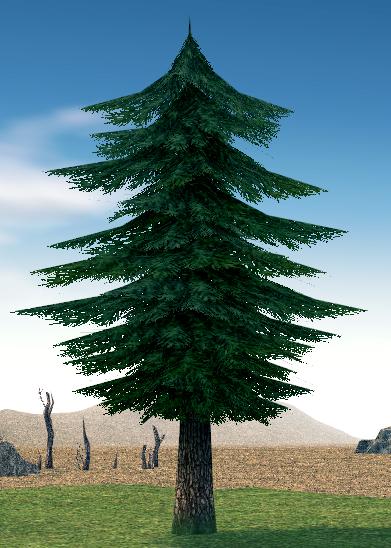 Mabinogi Homestead Harmonious Fir Tree