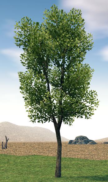 Mabinogi Homestead Harmonious Prairie Tree