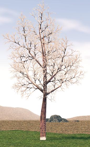 Mabinogi Homestead Harmonious Snowfield Tree 1