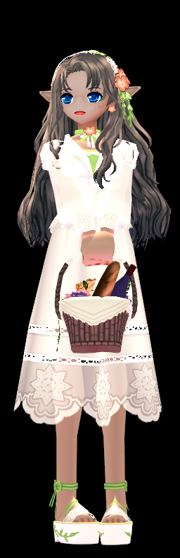 Mabinogi Secret Garden Flower Basket