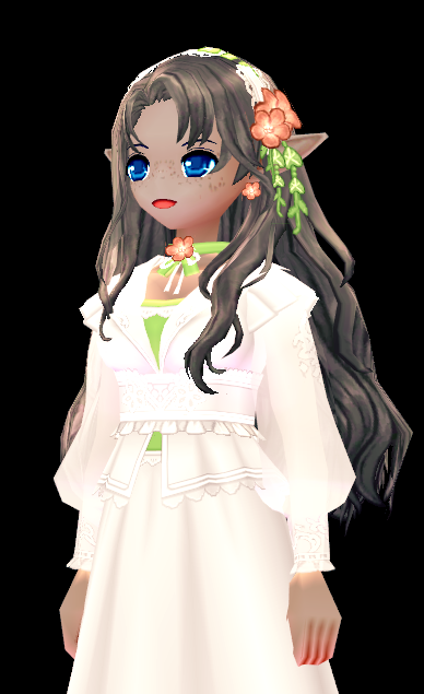 Mabinogi Secret Garden Wig and Hairpiece (F)
