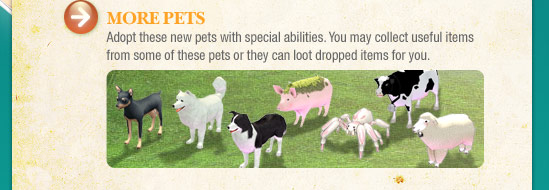 More Pets