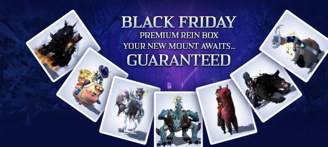 Premium Rein Box